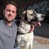 Stefan: Hundesitter in Chemnitz und Umgebung