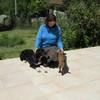 Bénédicte: Dog Sitter sur Château l'Evèque