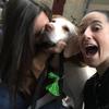 Mariana : ¡Cuido a tu mascota! 🤩🐾