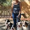 Glòria: Cuido y paseo a tu perro, para que estés  tranquilo