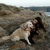 Carlota: Cuidadora de perros en Oleiros