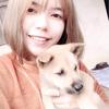 Hong Anh: Cuidador los perritos con gran corazon