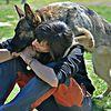 Ade: Cuidadora de perros en Madrid