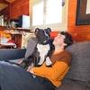 Pierre : Garde nos amis canins sur Saint Medard en Jalles