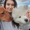 Natasha: All day dog walks Glasgow