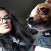 Laura: Dog Sitter Glasgow