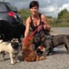 Gill: All 4 Animals Petcare - providing the best dog-walking!