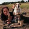 Jo: Doggy Holidays In The Beautiful Countryside
