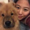 Liz: Loves for dogs: dogluv-house near Hammersmith