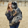 Joanne: Walk n Wag!  Your dog will have a fun, enjoyable walk with me!