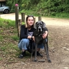 Ella: Ella's Dog walking and Sitting London
