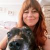 Lorryn: Lorryn's Dog Sitting Liverpool