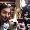 Natasha: Natasha's Dog Sitting London