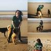 Yvonne: Vonni's Dog Sitting service.. Southport