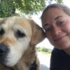 Anna: Anna's Hundebetreuung