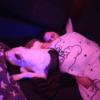 Shanice: Sweet Home Dogs