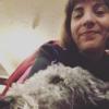 Sandra: Your doggo's best mate