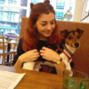 Natasha: Sharing With a Qualified Vet and Friendly Jack Russell