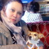 Lucinda: Lucinda's Dog Sitting Wallasey