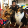 Juan Felipe: Pet sitter in Leeds