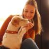 Nicola: Nici's Hundebetreuung