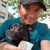 Henry: Salidas de paseo y juegos para perritos