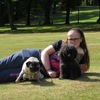 Sarah : Glasgow Dog Sitter