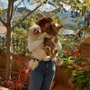 Elena: Estudiante veterinaria