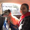 Sara : Dog walker