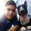 Luis Ernesto: Pet lover.. Cuido con amor a tu mascota!!