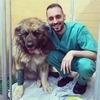 Andrés : Paseo y cuido perros a domicilio por la zona de Vera (Almería)