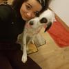 Sarah: Garde chien