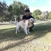 Gabriell: Encargado para paseo de mascotas con disponibilidad inmediata.