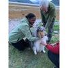 Gio: Dog sitter in Glasgow
