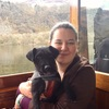 Clare: Dog sitter in South West London