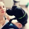 Meguy: Promenade pour chien au Mans