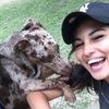 Shiryne: Dog sitter expérimentée sur Nice