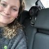 Amelia: Dog walker & sitter