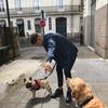 Jules: Je suis amoureux des chiens