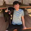 Jack: Dog walker
