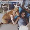 Ketty: Cuido y paseo los perros