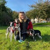 Hannah : Doggie day care,  walks, boarding & 24/7 cuddles