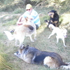Nadine: La Maison du Bonheur pour chiens
