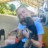 Somer: Long dog walks, cuddles and doggie drop in's