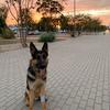 Tatiana: Cuidadora de animales