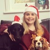 Emma: Pawfect dog walker/sitter/day care in Surrey
