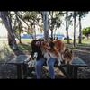 Erika: Cuidados como en su propia casa, paseadora de perros