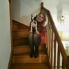 Hana: Garder un petit chien le week-end.