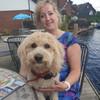 Brenda Tate: HappyDogs
