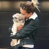 Charlotte: Dog sitter Paris
